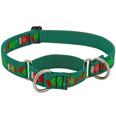 "Lupine 1"" Stocking Stuffer 15-22"" Martingale Training Collar - Large Dog"