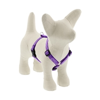 "Lupine 1/2"" Jelly Roll 12-20"" Roman Harness"
