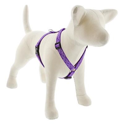 "Lupine 3/4"" Jelly Roll 14-24"" Roman Harness"
