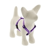 "Lupine 1/2"" Jelly Roll 9-14"" Roman Harness"