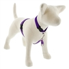 "Lupine Jelly Roll 16-26"" No-Pull Harness - Medium Dog"