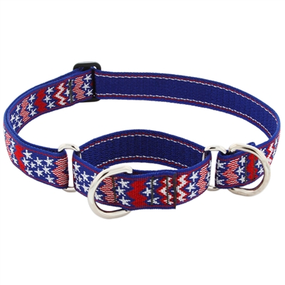 "Retired LupinePet 1"" America 15-22"" Martingale Training Collar - Large Dog"