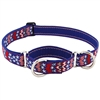 "Lupine 1"" America 19-27"" Combo/Martingale Training Collar - Large Dog LIMITED EDITION"