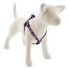 "LupinePet 3/4"" America 20-30"" Step-in Harness - Medium Dog MicroBatch"