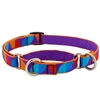 "Retired Lupine 3/4"" Aurora 10-14"" Martingale Training Collar - MicroBatch"