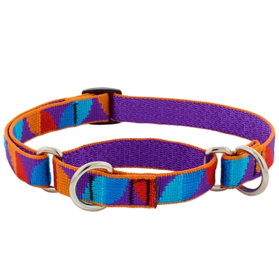 "Lupine 3/4"" Aurora 10-14"" Combo/Martingale Training Collar - Medium Dog LIMITED EDITION"