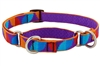 "Lupine 3/4"" Aurora 14-20"" Martingale Training Collar - Medium Dog MicroBatch"