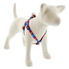 "LupinePet 3/4"" Aurora 20-30"" Step-in Harness - Medium Dog MicroBatch"