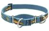 "Lupine 1"" Big Fish 15-22"" Martingale Training Collar Ships in March 2021"