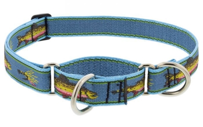 "Lupine 1"" Big Fish 19-27"" Martingale Training Collar Ships in April 2021"