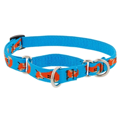 "Lupine 3/4"" Foxy Paws 10-14"" Martingale Training Collar"