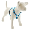 "Lupine 3/4"" Foxy Paws 12-20"" Roman Harness - Medium Dog"