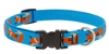 "Retired Lupine 1"" Foxy Paws 16-28"" Adjustable Collar - Large Dog"