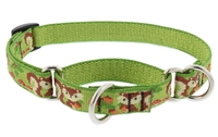 "Lupine 3/4"" Go Nuts 14-20"" Martingale Training Collar"