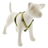 "Lupine 3/4"" Go Nuts 14-24"" Roman Harness"