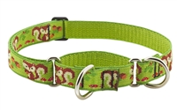 "Retired Lupine 1"" Go Nuts 19-27"" Martingale Training Collar"