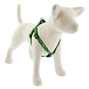 "Lupine 3/4"" Garden Party 15-21"" Step-in Harness - Medium Dog LIMITED EDITION"