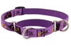 "Lupine 3/4"" Haunted House 10-14"" Combo/Martingale Training Collar - Medium Dog LIMITED EDITION"