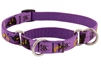 "LupinePet 3/4"" Haunted House 14-20"" Martingale Training Collar - Medium Dog MicroBatch"