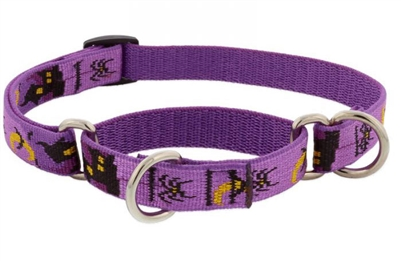 "Lupine 3/4"" Haunted House 14-20"" Martingale Training Collar - Medium Dog MicroBatch"