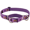 "LupinePet 1"" Haunted House 19-27"" Martingale Training Collar - Large Dog MicroBatch"