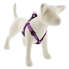 "LupinePet 1"" Haunted House 24-38"" Step-in Harness - Large Dog MicroBatch"