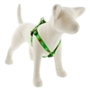 "Lupine 3/4"" Happy Holidays Green 20-30"" Step-in Harness"