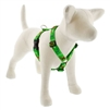 "Lupine 1"" Happy Holidays Green 24-38"" Roman Harness"