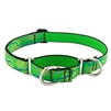 "Lupine 1"" Intervale 15-22"" Martingale Training Collar MicroBatch"