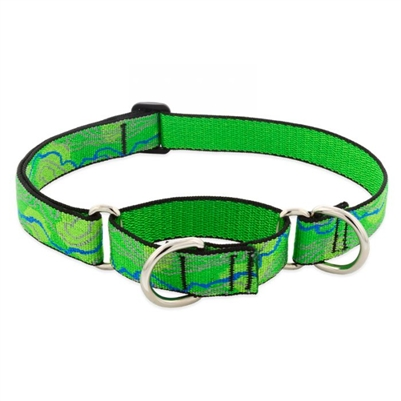 "Retired Lupine 1"" Intervale 15-22"" Martingale Training Collar"