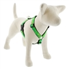 "Lupine 1"" Intervale 20-32"" Roman Harness MicroBatch"