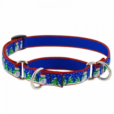 "Lupine 3/4"" Jack Frost 14-20"" Martingale Training Collar"