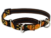 "Lupine 3/4"" Jack O Lantern 10-14"" Martingale Training Collar"