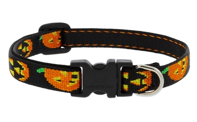 "Lupine 1/2"" Jack O Lantern 10-16"" Adjustable Collar"