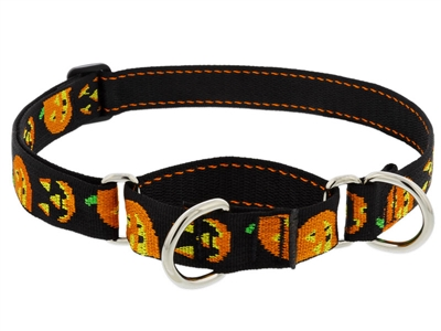 "Lupine 1"" Jack O Lantern 15-22"" Martingale Training Collar"