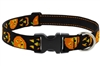 "Lupine 1"" Jack O Lantern 16-28"" Adjustable Collar"