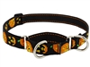 "Lupine 1"" Jack O Lantern 19-27"" Martingale Training Collar"