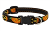 "Lupine 1/2"" Jack O Lantern 6-9"" Adjustable Collar"