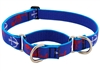 "Retired LupinePet 1"" Lobstahs 15-22"" Martingale Training Collar - Large Dog"