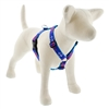 "Retired Lupine 1"" Lobstahs 24-38"" Roman Harness MicroBatch"