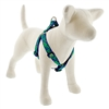"Lupine 1"" Lucky 19-28"" Step-in Harness"