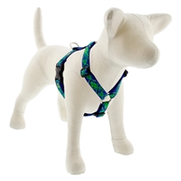 "Lupine 1"" Lucky 24-38"" Roman Harness MicroBatch"
