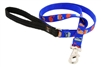 Lupine Mod Pod 4' Padded Handle Leash - Medium Dog LIMITED EDITION