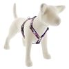 "Lupine 3/4"" Magic Unicorn 12-20"" Roman Harness MicroBatch"