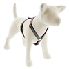 "Retired Lupine 3/4"" Outback 20-32"" Roman Harness - Medium Dog"