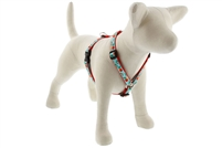 "Retired Lupine 3/4"" Orchard 12-20"" Roman Harness - Medium Dog"