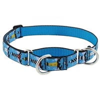 "Lupine 1"" On the Rocks 15-22"" Martingale Training Collar"