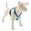 "Lupine 1"" On the Rocks 24-38"" Roman Harness"