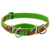 "Lupine 1"" Parrots 15-22"" Martingale Training Collar Ships in February 2021"