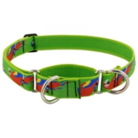"Lupine 1"" Parrots 15-22"" Martingale Training Collar"